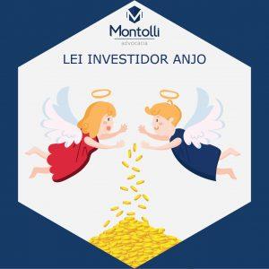 Investidor Anjo